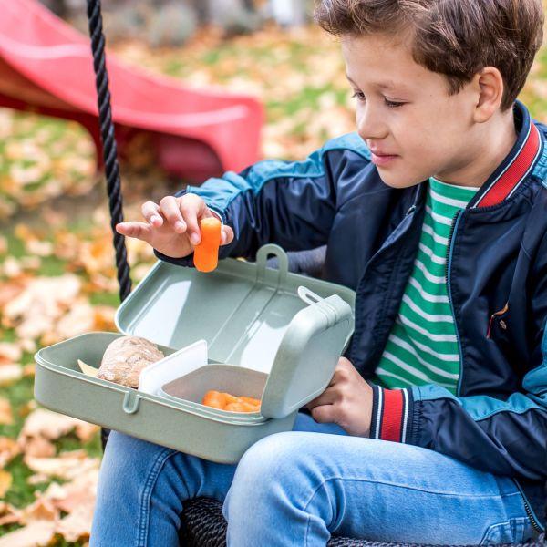 Koziol Lunchbox mit Trennsteg PASCAL L organic green, pink